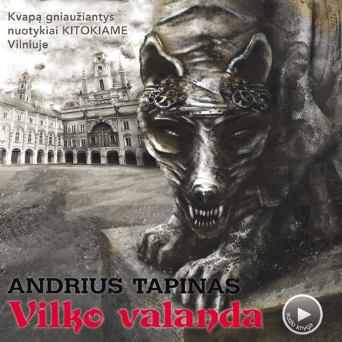 Andrius Tapinas. Audio knyga Vilko Valanda