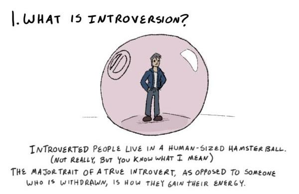 kaip gyventi su introvertu